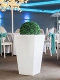 Led plantenbak